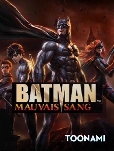 Toonami - Batman : mauvais sang