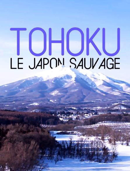 Tohoku, le Japon sauvage