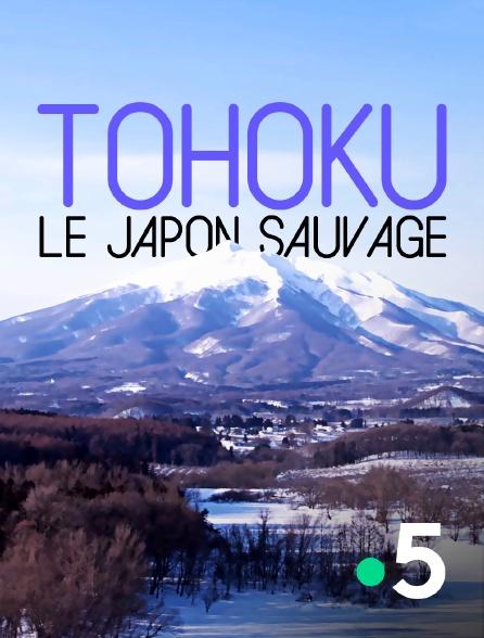 France 5 - Tohoku, le Japon sauvage