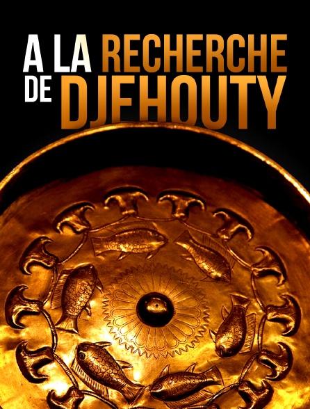 A la recherche de Djehouty