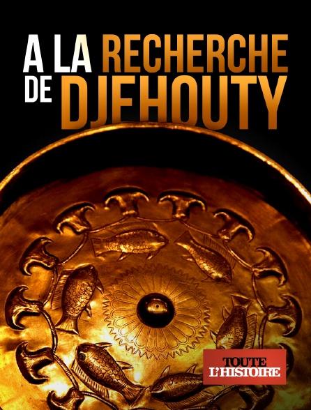 Toute l'histoire - A la recherche de Djehouty