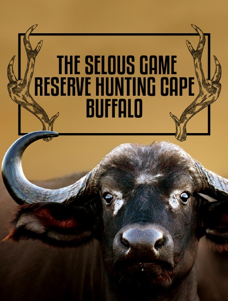 The Selous Game Reserve - Hunting Cape Buffalo