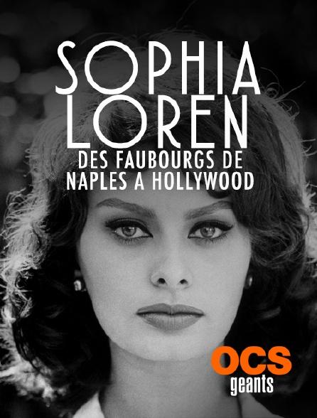OCS Géants - Sophia Loren : Des faubourgs de Naples à Hollywood