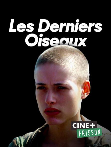 Ciné+ Frisson - Les derniers oiseaux