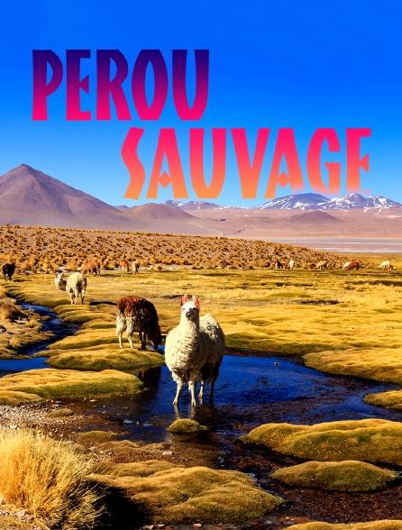 Pérou sauvage