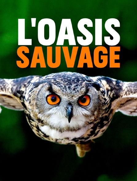 L'oasis sauvage