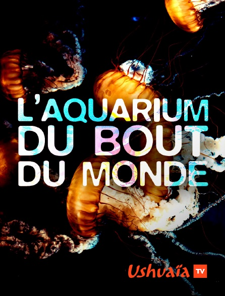 Ushuaïa TV - L'aquarium du bout du monde