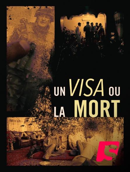 Spicee - Un visa ou la mort