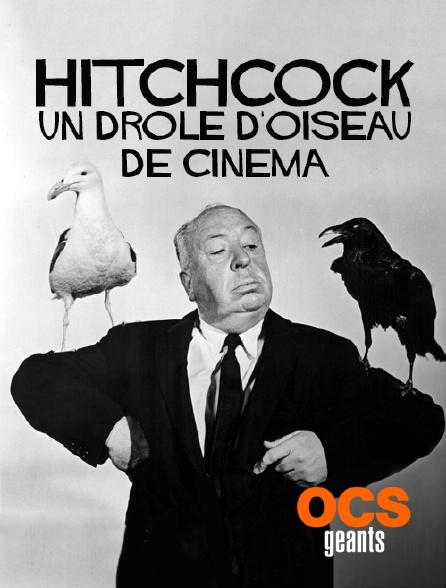 OCS Géants - Hitchcock, un drôle d'oiseau de cinéma