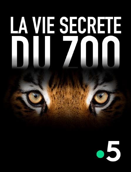 France 5 - La vie secrète du zoo