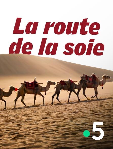 France 5 - La route de la soie