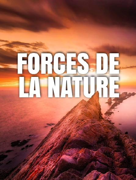 Forces de la nature *2016