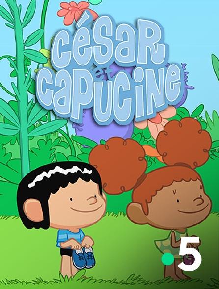 France 5 - César et Capucine