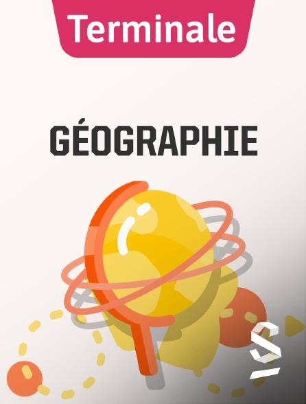 SchoolMouv - Géographie - Terminale
