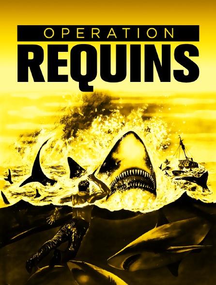 Opération requins