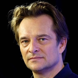 David Hallyday - Chanteur