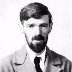 D.H. Lawrence - Ecrivain