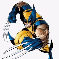 Wolverine - Sujet