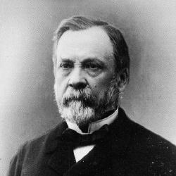 Louis Pasteur - Scientifique