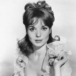 Elsa Martinelli - Actrice