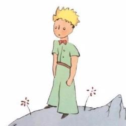 Le Petit Prince - Sujet