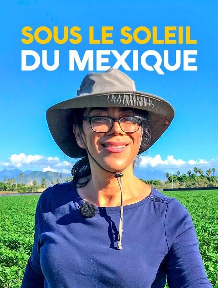 Sous le soleil du Mexique