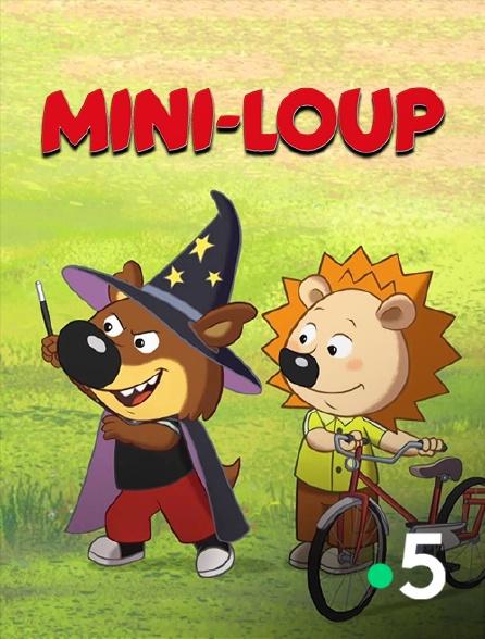 France 5 - Mini-Loup