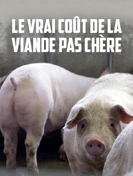 Le vrai coût de la viande pas chère