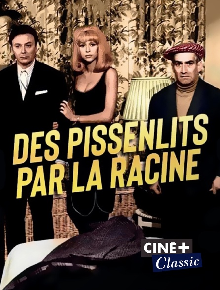 Ciné+ Classic - Des pissenlits par la racine