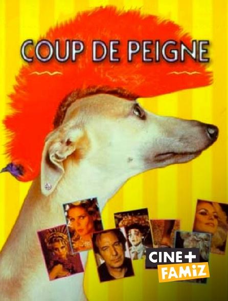 Ciné+ Famiz - Coup de peigne