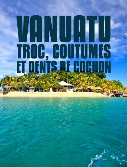 Vanuatu : Troc, coutumes et dents de cochon