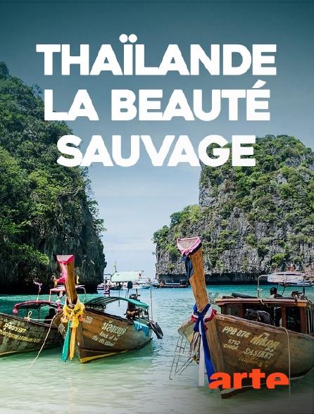 Arte - Thaïlande, la beauté sauvage