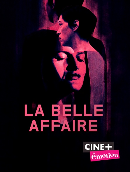 Ciné+ Emotion - La belle affaire