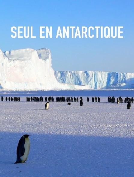 Seul en Antarctique