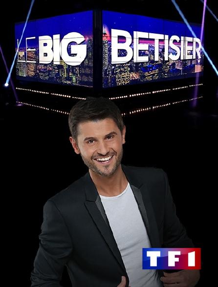 TF1 - Le big bêtisier