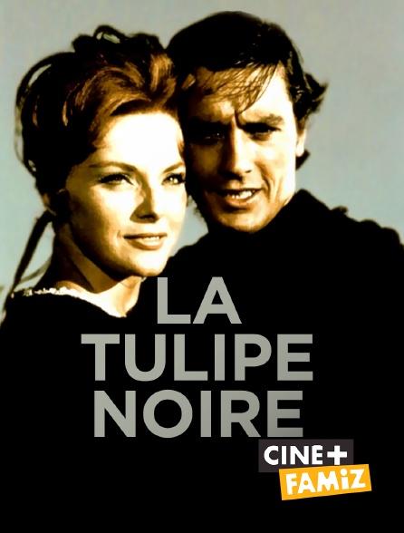 Ciné+ Famiz - La Tulipe noire
