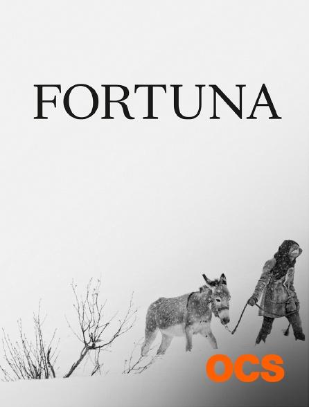 OCS - Fortuna