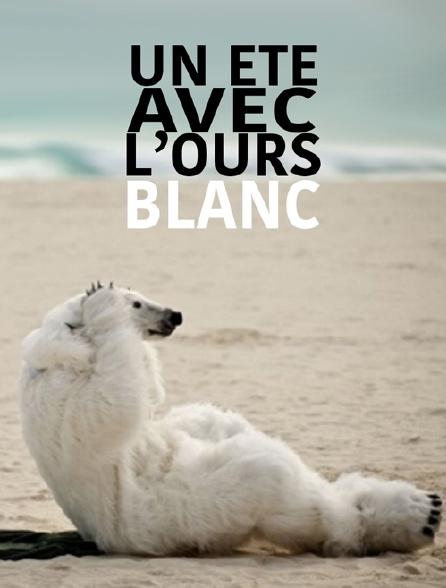 Un été avec l'ours blanc