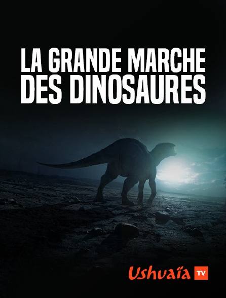 Ushuaïa TV - La grande marche des dinosaures