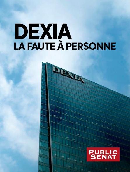 Public Sénat - Dexia, la faute à personne