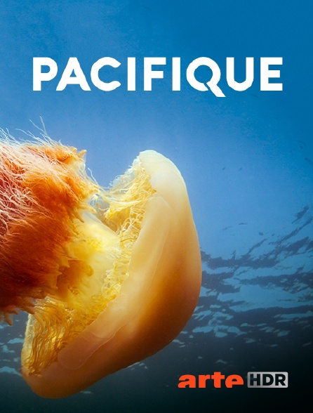 Arte HDR - Pacifique
