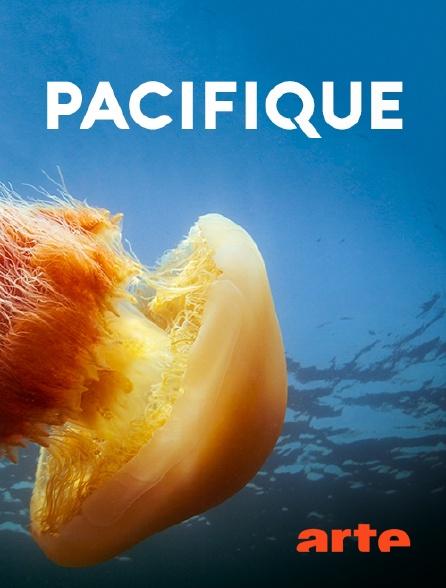 Arte - Pacifique