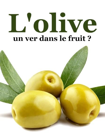 L'olive, un ver dans le fruit ?