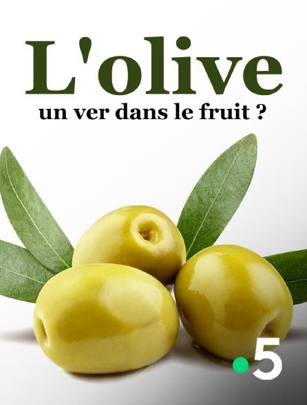 France 5 - L'olive, un ver dans le fruit ?