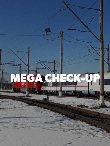 Mega check-up