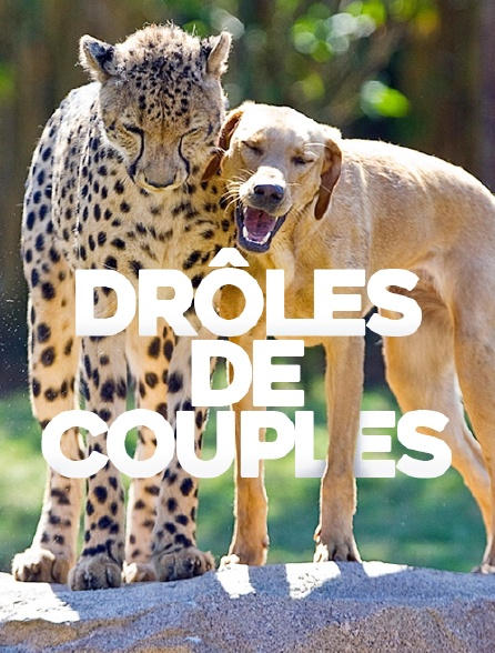 Couples insolites