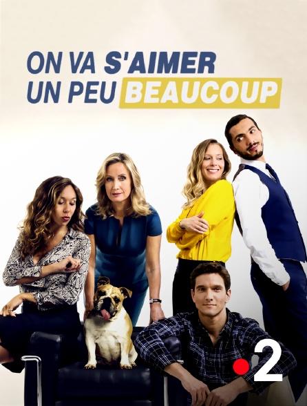 France 2 - On va s'aimer un peu, beaucoup