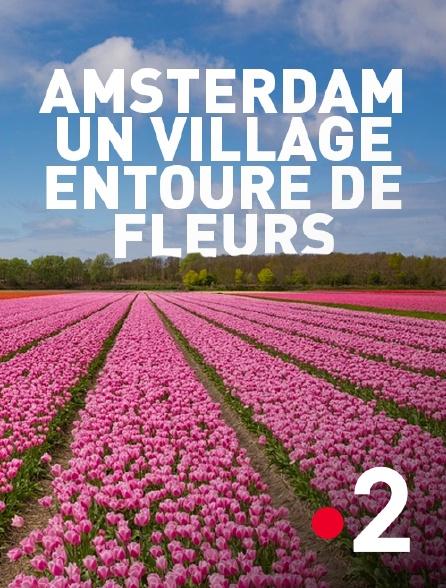 France 2 - Amsterdam, un village entouré de fleurs