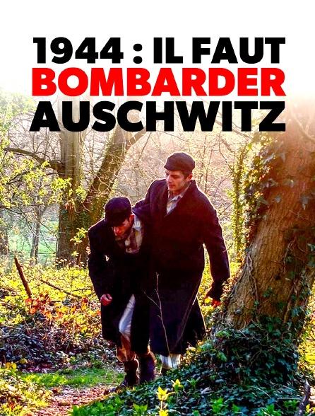 1944 : il faut bombarder Auschwitz