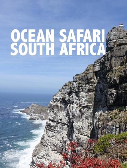 Ocean Safari : South Africa